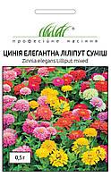 Цинния (Майоры) Лилипут (Фасовка: 0,5 г; Цвет: смесь)