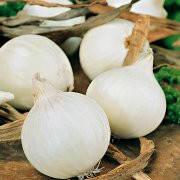 Семена Лук севок  Сноубол (Фасовка: 1 кг)