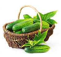 Семена Огуречная корзина (Фасовка: 1 шт.)