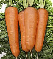 Семена Морковь Курода Шантане (Фасовка: 1 г)
