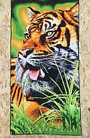 Пляжное полотенце с рисунком тигр