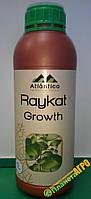 Комплексное удобрение Raykat Growth (Райкат Рост), 1 л
