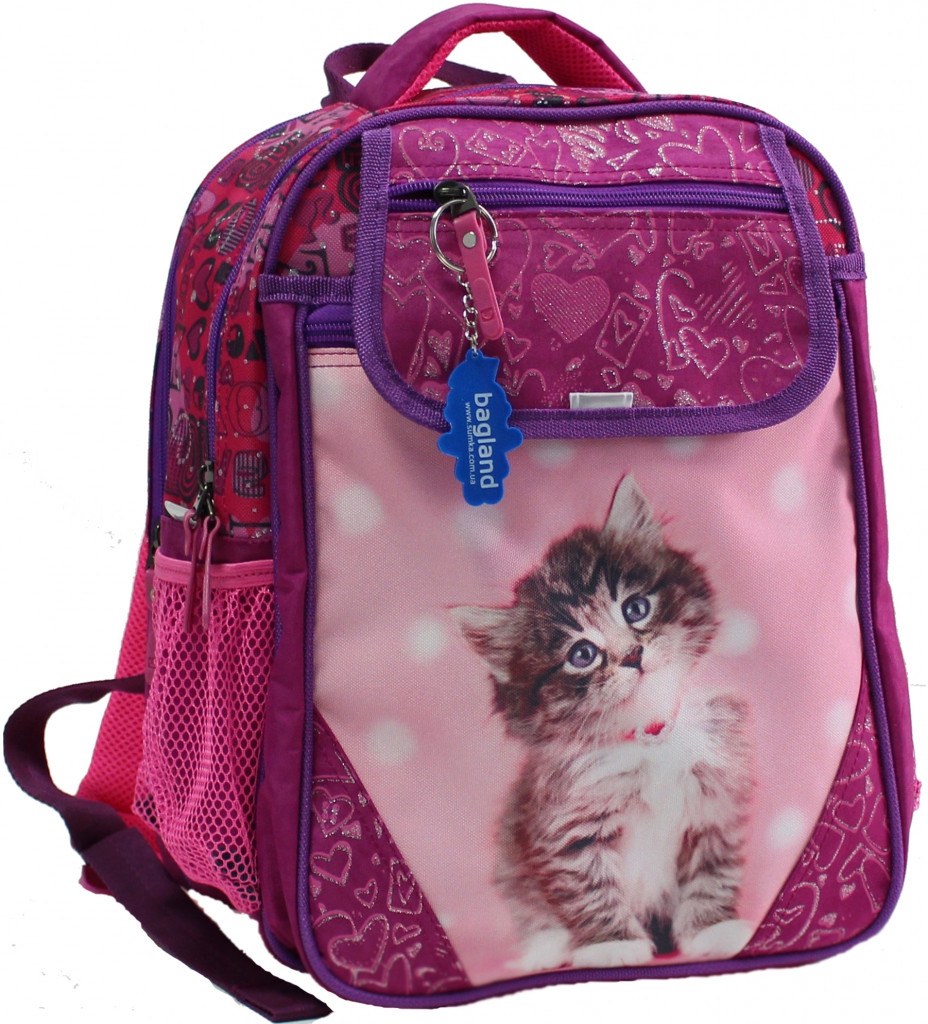Рюкзак школьный 0058070-9