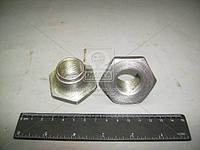 Гайка (Производство МТЗ) 70-4202083-А