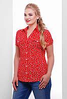 Женская блузка Якира