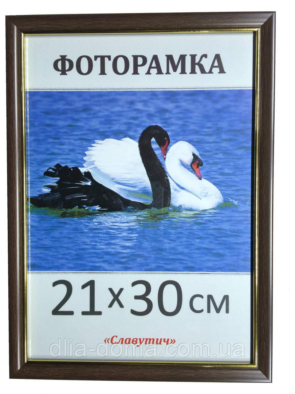 Фоторамка пластиковая 21х30, рамка для фото 1613-16