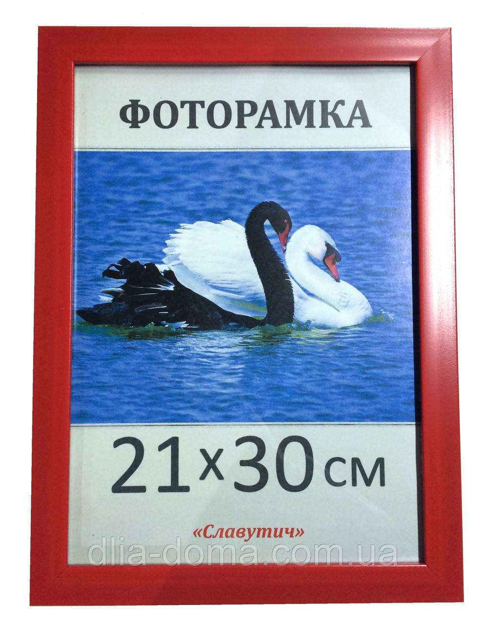 Фоторамки пластиковые 21х30, рамка для фото 2216-58