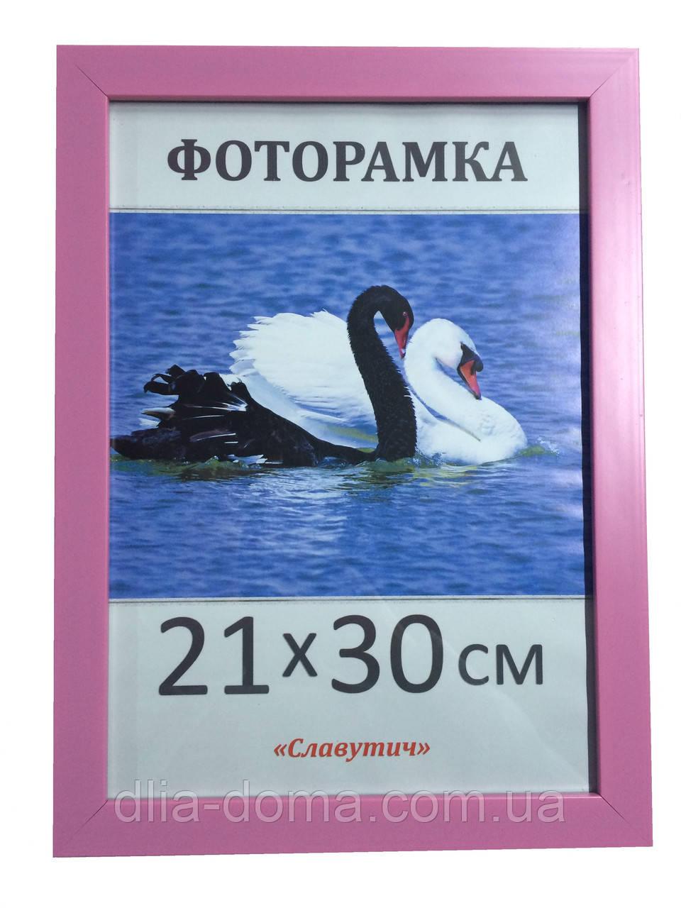 Фоторамка пластиковая 21х30, рамка для фото 2216-69