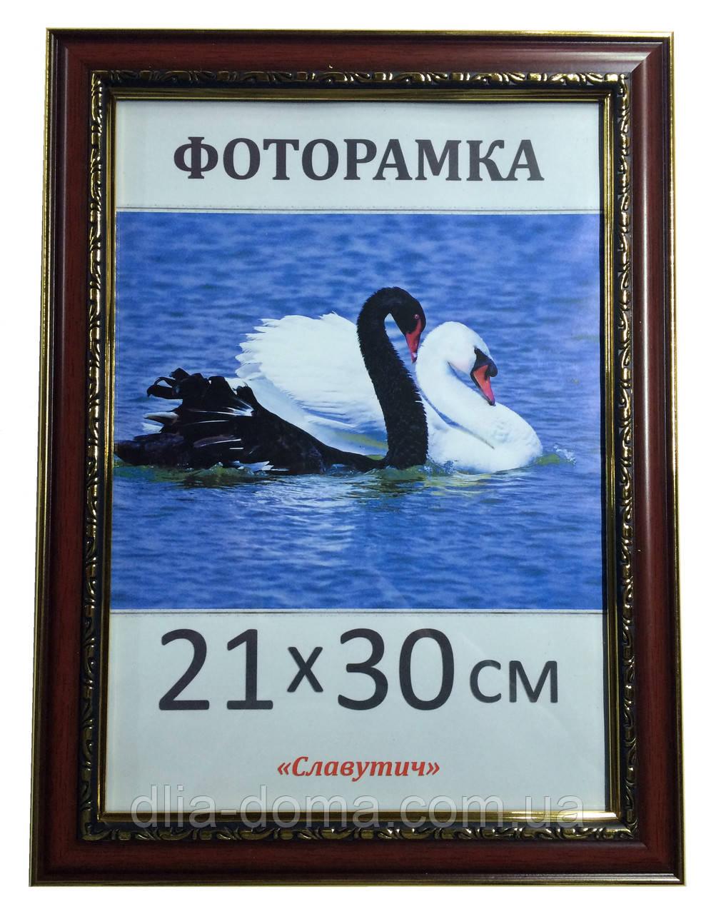 Фоторамки пластиковые  21х30, рамка для фото 1928-998