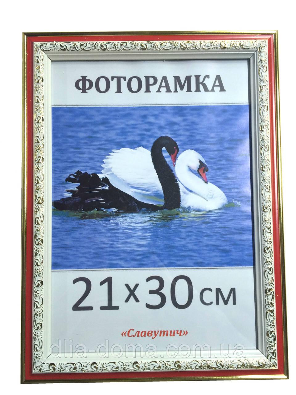 Фоторамка пластиковая 21х30, рамка для фото 3020-58