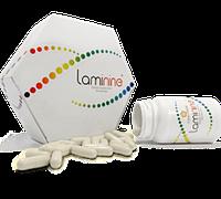 Отзывы и рекомендации о ламинине американских врачей.