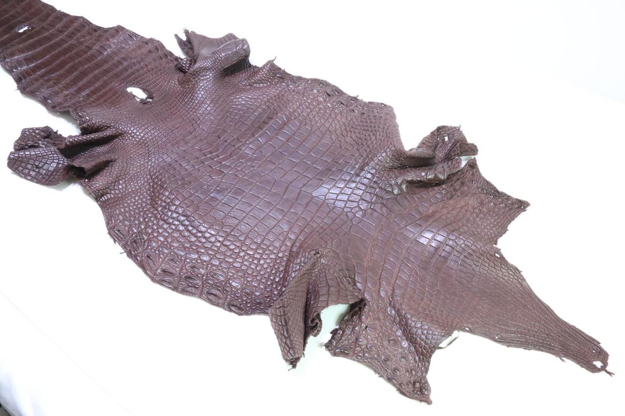 Шкура с брюха сиамского крокодила коричневая
