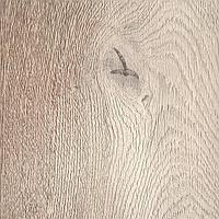 Коростень Legna (Дуб Эверест)