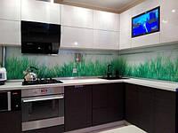 Просторная угловая кухня с телевизором, фото 1