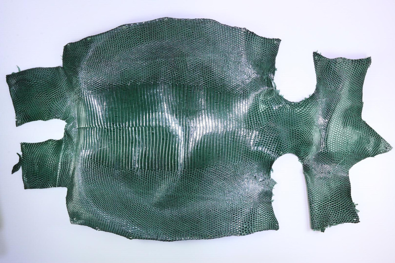 Шкура ящерицы (варана) темно-зеленая