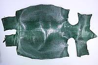 Шкура ящерицы (варана) темно-зеленая, фото 1