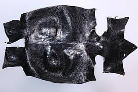 Шкура ящірки (варана) чорна
