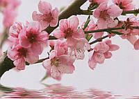 Фотообои  красивые на стену Сакура размер 196 х 272 см