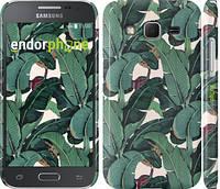 """Чехол на Samsung Galaxy J5 J500H Банановые листья """"3078u-100"""""""