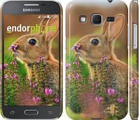 """Чехол на Samsung Galaxy J5 J500H Кролик и цветы """"3019u-100"""""""