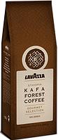 Кофе в зернах Lavazza Café KAFA FOREST COFFEE Ethiopia Premium 100% арабика (Премиум-класса) 500г