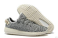 Кроссовки Adidas Yeezy Boost 350 Low Turtle/Grey, фото 1