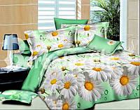 Красивое постельное белье Ранфорс (двуспалка)