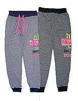Штаны спортивные для девочки, GRACE, размер 152, арт. G-60031