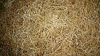 Кокосовая койра латексированная в рулонах 800 гр/м2