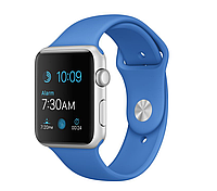 42mm Silver Aluminum Case with Royal Blue Sport Band