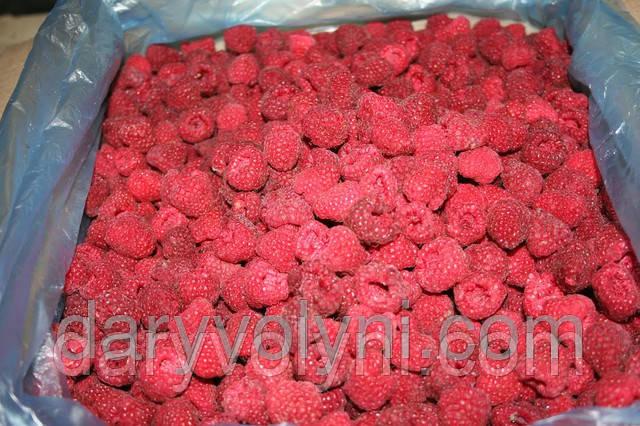 Beeren, Pilze Ukraine Für ausländische Unternehmen