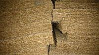 Кокосовая койра в листах 200*160*3 см. пропитанная натуральним латексом 3000 гр/м2
