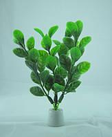 Штучне рослина для акваріума, 10 див.