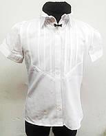 Нарядная школьная коттоновая блузка для девочки с коротким рукавом