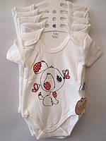 """Детское боди-футболка """"Песик"""". 68-86 р.р. Молочный. Оптом."""