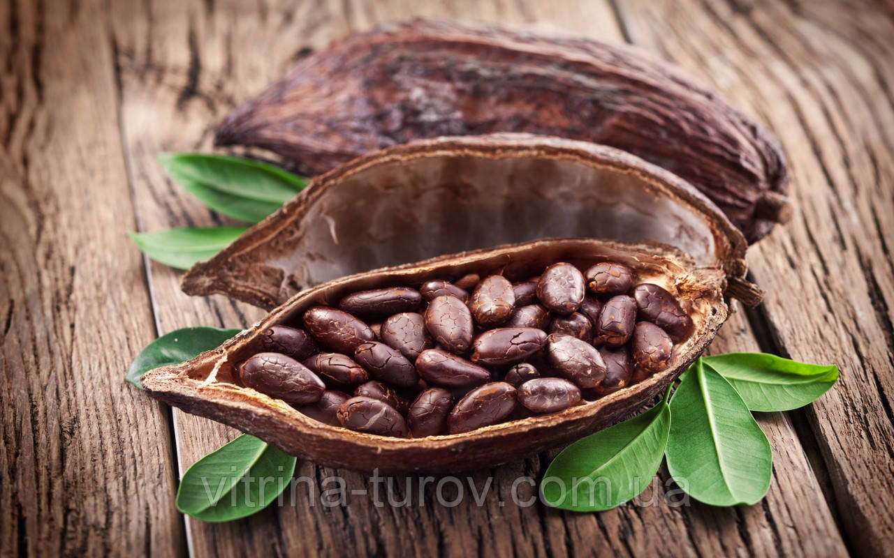 Все будет какао! Самый сладкий отдых на Шри Ланке!