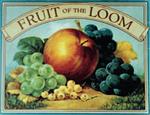 Текстиль и футболки Fruit of the Loom