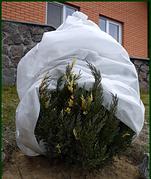 агроволокно Greentex 50 1.6*100