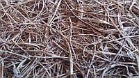 """Пальмовое волокно """" Морская трава"""" в рулоне на джгутовой основе"""