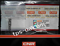 Клапан PLD-секции EURO-2 Bosch (CNR 150-220)