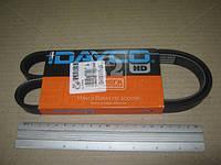 Ремень поликлиновый 5PK1013HD (Производство DAYCO) 5PK1013HD