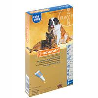 Advocate (Адвокат) средство против паразитов для собак от 25 до 40 кг 1 пипетка