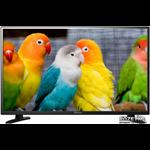 Телевизор St Led 24Hd300U