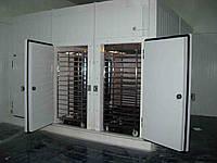 Озонирование промышленных холодильников и морозильных систем
