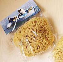 Морская губка Honeycomb для тела, натуральная, 5-5,5 дюйма, Греция