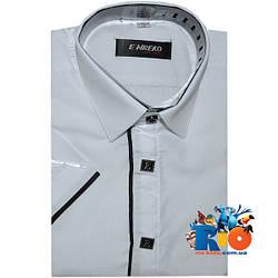 Детская рубашка с коротким рукавом арт.104 , для мальчиков (р-р 29-36)