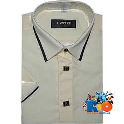 Рубашка с коротким рукавом арт.104 , для мальчика (р-р 29-36)