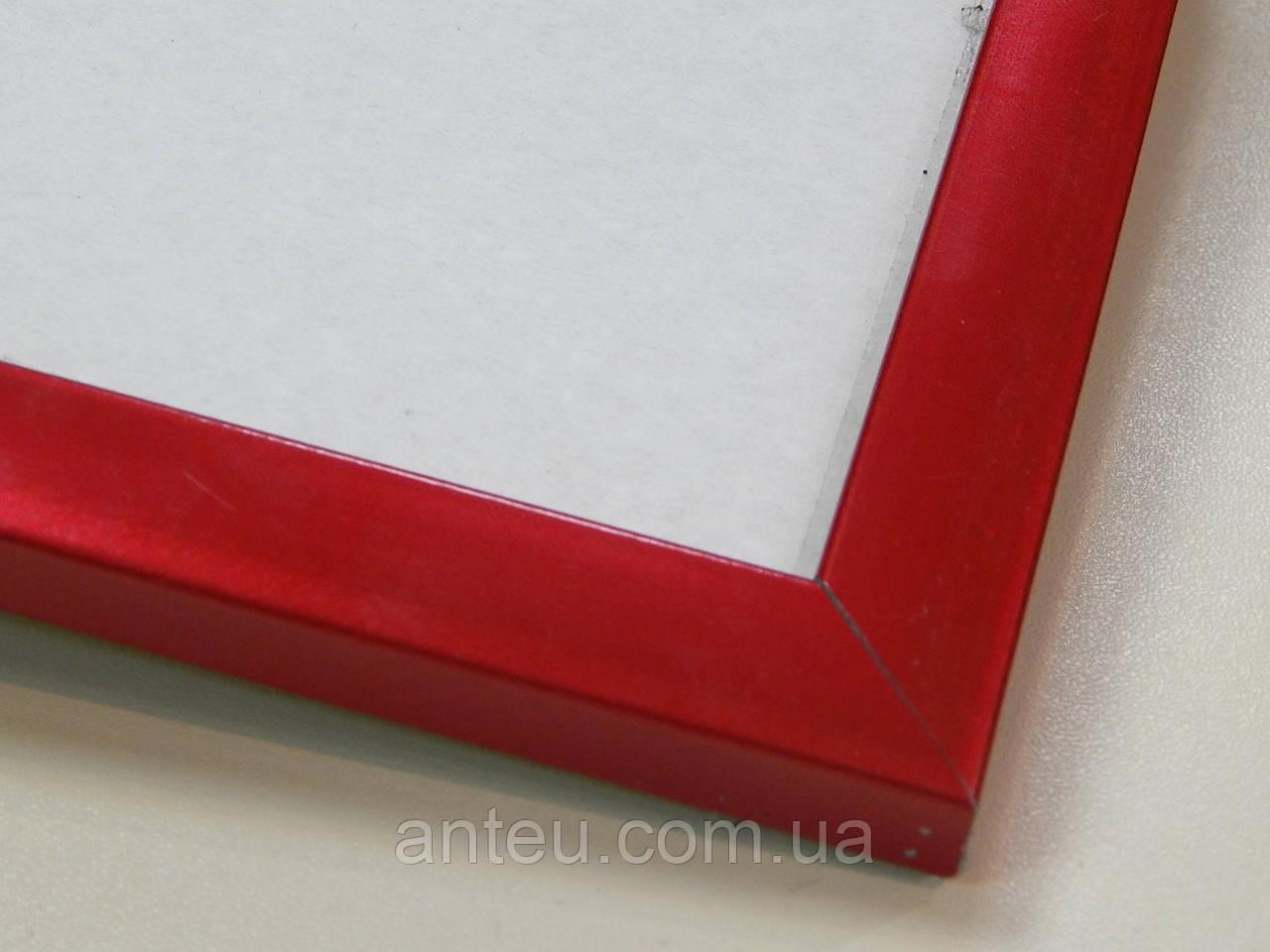 Рамка А3 (297х420).Профиль 16 мм.Красный металлик.