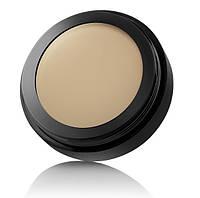Комуфляж-Корректор с кремовой текстурой (60) Темный Беж Cover Cream Camouflage Paese