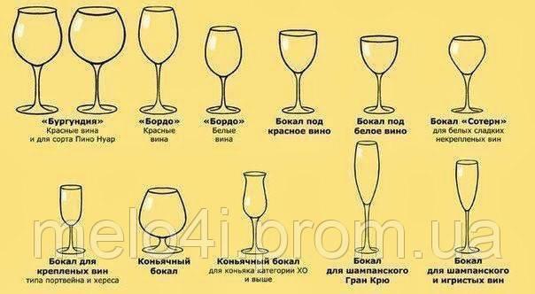 Названия бокалов и их назначение